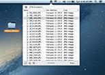 Folder Content window